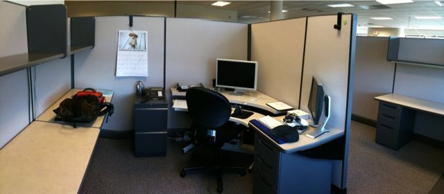 My new cubicle
